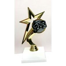 Star-Music Award