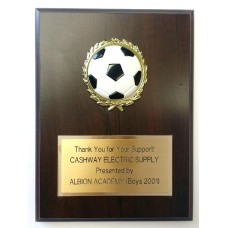 "6"" x 8"" Dome Ball Sport Plaque"