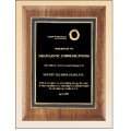 American walnut plaque with a black florentine border