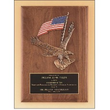 Plaque with  Eagle and American flag casting.