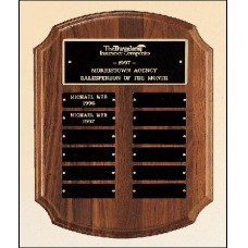 P2541  Perpetual Plaque with 12 plates.