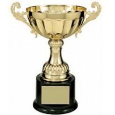 CMC100 Series  Metal Cup