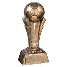 Soccer Champion Award