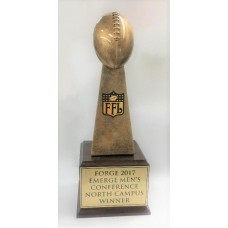 Winners Series -Gold Football Trophy