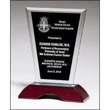 Glass Award with Black Silk Screened Center