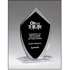 Shield Shaped Glass Award