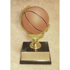 BAS10 Basketball Spinner Trophy