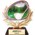 JDP411 Participation Award