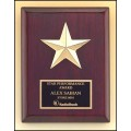 P3992 Constellation Series Rosewood Award