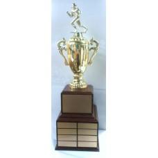Fan-06 Fantasy Football Award