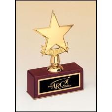 108 Polished metal goldtone star