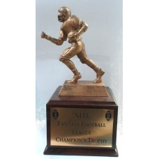 Fan-01 Fantasy Football Award